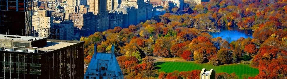 Central Park pretty colorful!